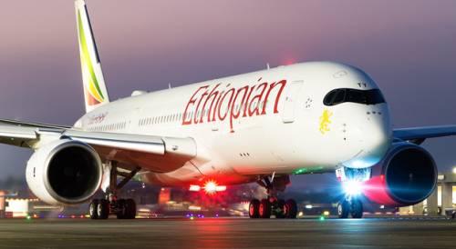 """Esperto di incidenti aerei: """"Un errore del software è difficile da controllare"""""""