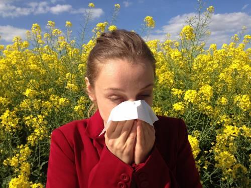 I falsi miti sulle allergie primaverili