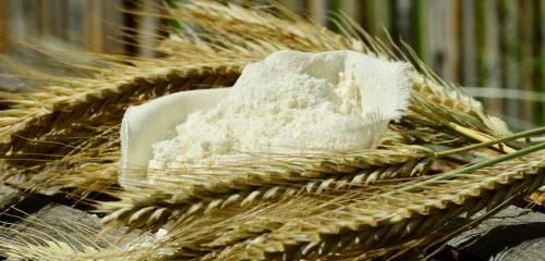 Escrementi e zampe di topo nel pacco di farina: Nas chiudono stabilimento