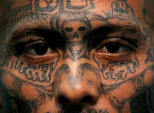 Ammazzato e seppellito nella cascina in campagna da una gang di latinos