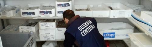 Salmone e tonno scaduti sugli scaffali: 20mila euro di multa a due market