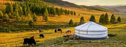 Mongolia, allarme peste bubbonica: due i morti