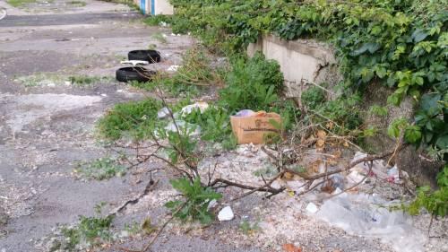Napoli, l'abbandono di Agnano 5