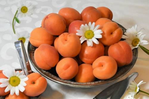 Albicocche, un prezioso frutto per la salute