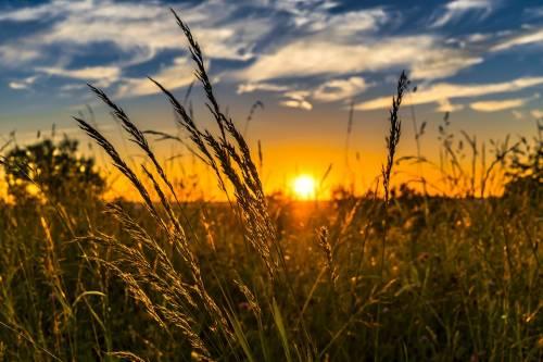 Tutti gli effetti benefici del solstizio d'estate
