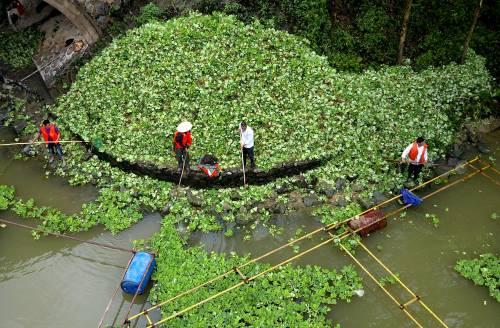 Svolta a Pechino. La città-foresta aiuta l'ambiente