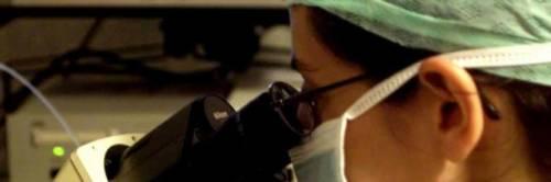 Colite ulcerosa: sintomi, diagnosi e cure