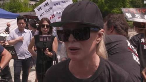 Kim Basinger si schiera contro i mangiatori di cani