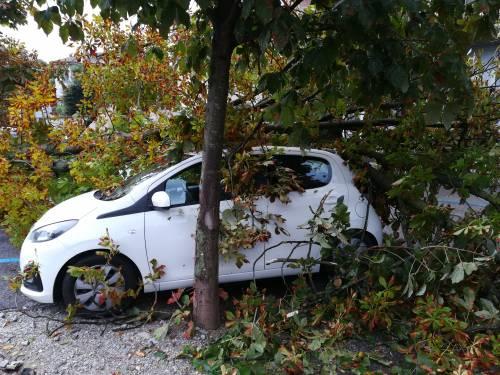 Maltempo al Nord, danni pesantissimi a Lodi, Brescia e Sud Milano 2