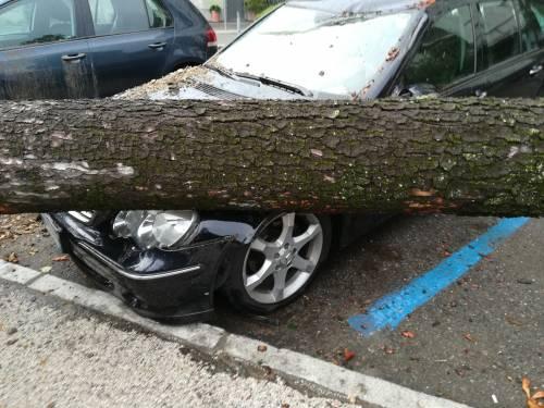Maltempo al Nord, danni pesantissimi a Lodi, Brescia e Sud Milano 3