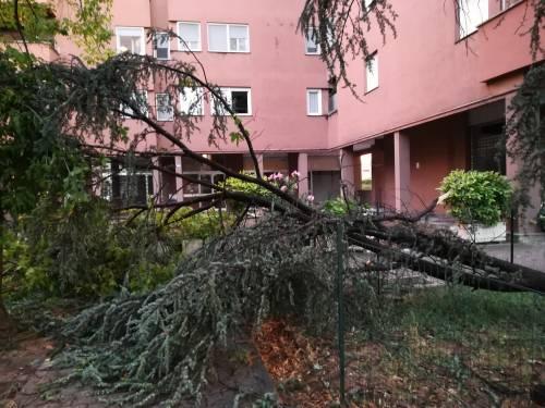 Maltempo al Nord, danni pesantissimi a Lodi, Brescia e Sud Milano 5