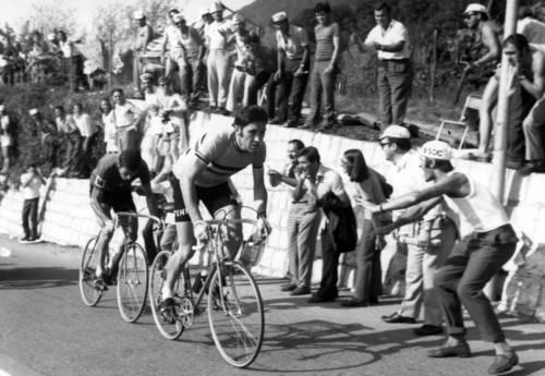 Felice Gimondi, una vita in bicicletta 3