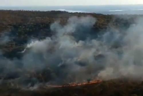 Amazzonia è in fiamme: la foresta brucia da giorni