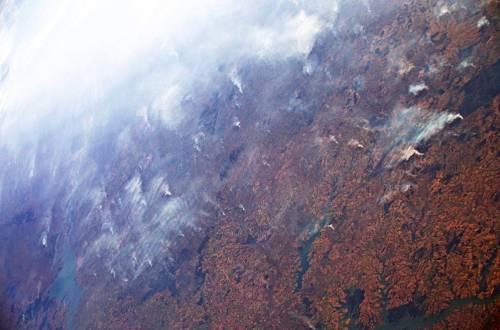 """Amazzonia, Parmitano lancia allarme: """"Fumo visibile da spazio"""""""