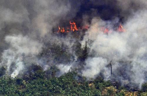 Amazzonia, così le Ong incendiano la foresta per incassare i fondi stranieri