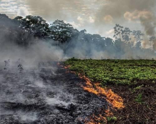 Brasile, arrestati quattro attivisti ong antincendio: appiccavano loro i roghi