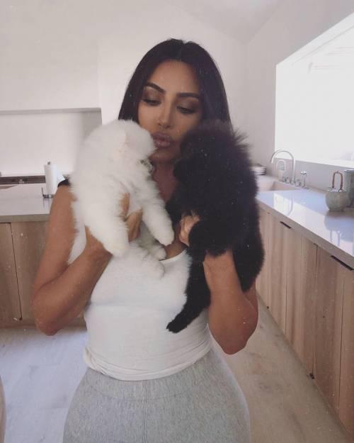 Nuovi cuccioli in casa Kardashian, ma piovono critiche