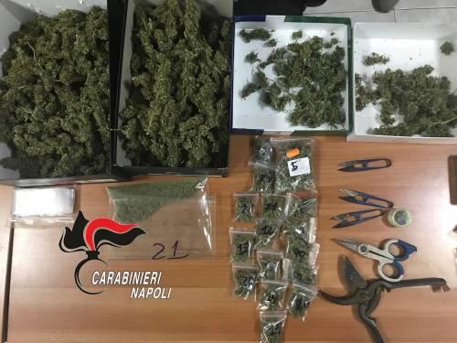 Otto chili di marijuana nascosti in casa, due arresti