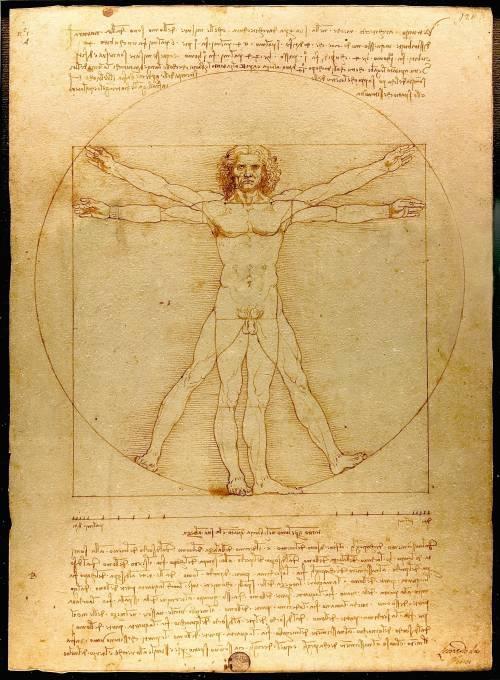 Tar sospende il prestito al Louvre dell'Uomo Vitruviano di Leonardo