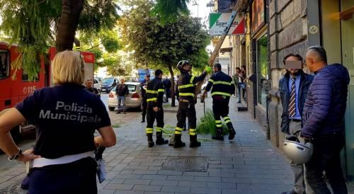 Cade un ramo sul marciapiede di corso Secondigliano, ferita una donna