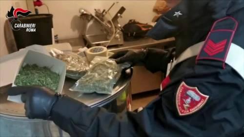 Roma, scoperta piantagione di marijuana a due passi da Villa Adriana