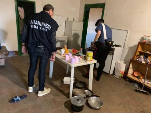 Puglia, le vite dei braccianti nelle mani dei caporali 3