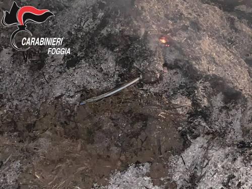 Cerignola, tre bulgari davano fuoco ai rifiuti in campagna: denunciati