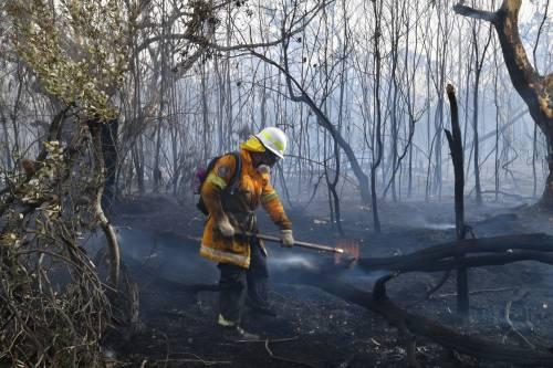 L'Australia minacciata dagli incendi: è emergenza 4