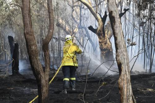 L'Australia minacciata dagli incendi: è emergenza 10