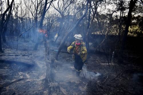 L'Australia minacciata dagli incendi: è emergenza 11