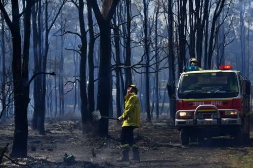 L'Australia minacciata dagli incendi: è emergenza 13