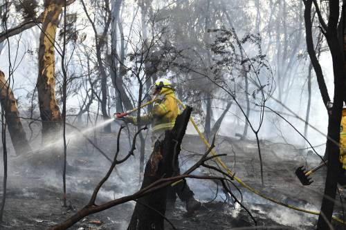 L'Australia minacciata dagli incendi: è emergenza 17