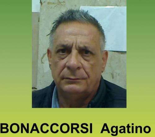Catania, sequestrati 41 kg di marijuana e arrestato corriere