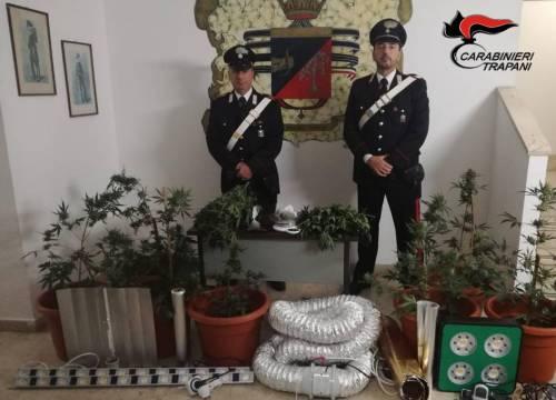 Coltivavano marijuana destinata allo spaccio, arrestati due marsalesi