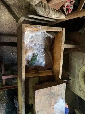 Macellazione abusiva scoperta a Marigliano: le immagini dell'operazione 3