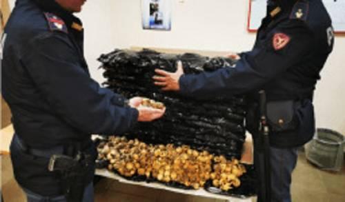 Polizia sequestro oppio 3