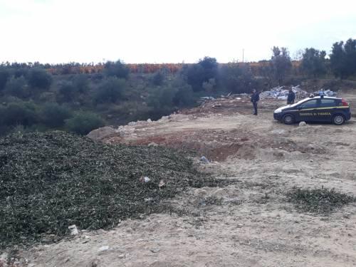 Andria, le immagini della discarica a due passi dal centro abitato