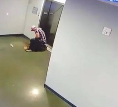 Il guinzaglio resta bloccato: cane rischia decapitazione