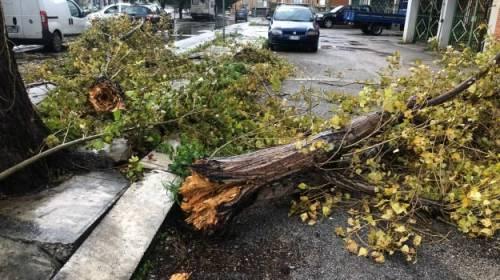 Vento e feriti: il Sud fa la conta dei danni della tempesta di Santa Lucia