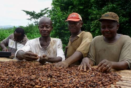 Come diventare il colosso del cacao in soli due anni