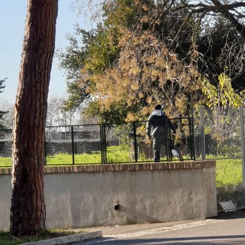 """""""Ho avuto paura di morire"""". Choc per la consigliera aggredita da un migrante a Colle Oppio"""