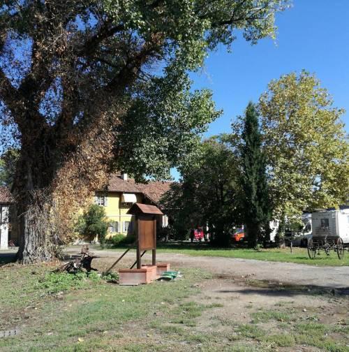 Uccise la 90enne col barattolo: la mossa del bulgaro per lo sconto di pena