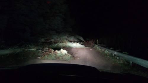"""Tetti crollati, alberi sradicati e decine di feriti: il bollettino """"di guerra"""" del vento 9"""