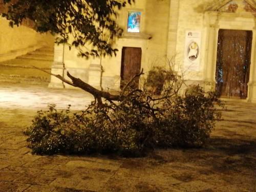 """Tetti crollati, alberi sradicati e decine di feriti: il bollettino """"di guerra"""" del vento 11"""