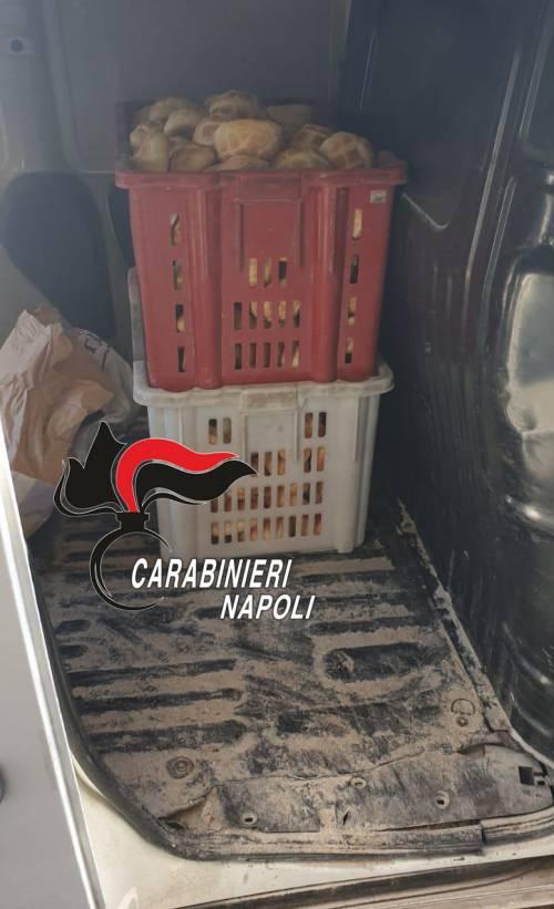 Pane e carciofi sequestrati a Napoli: le immagini dei carabinieri