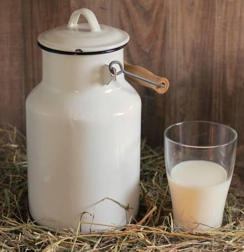 Larve, vino annacquato e ora il finto latte: tutte le follie dall'Ue