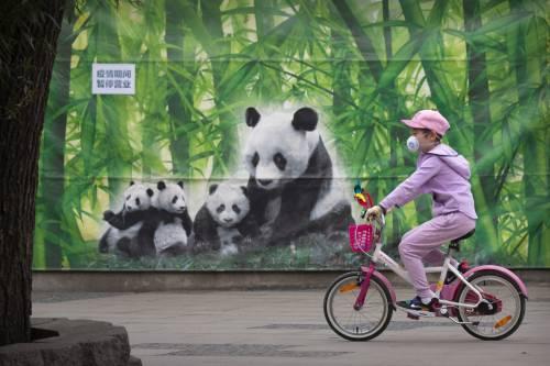 In Cina nessun contagio interno. E Pechino stimola l'economia