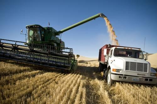 La pasta è a rischio produzione? Ecco cosa succederà nei prossimi mesi
