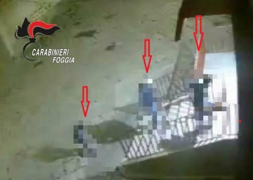Foggia, violano le norme anticontagio per commettere un furto: arrestati