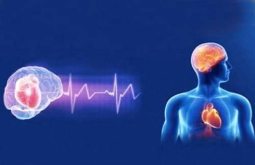 Ecco che cosa accade quando Covid attacca il cuore e il cervello